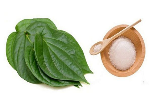 Lá trầu không kết hợp muối là bài thuốc được nhiều người áp dụng