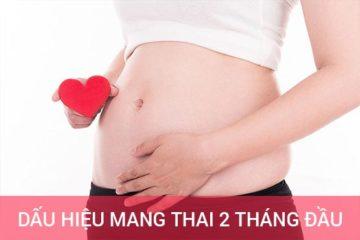 Tiết lộ dấu hiệu mang thai 2 tháng đầu mẹ nhất định phải biết